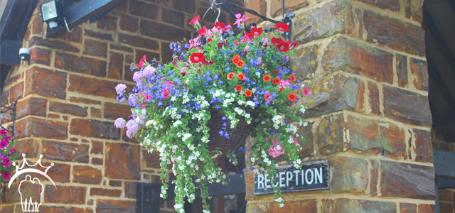 Castle Farm Care Dorset Flowers